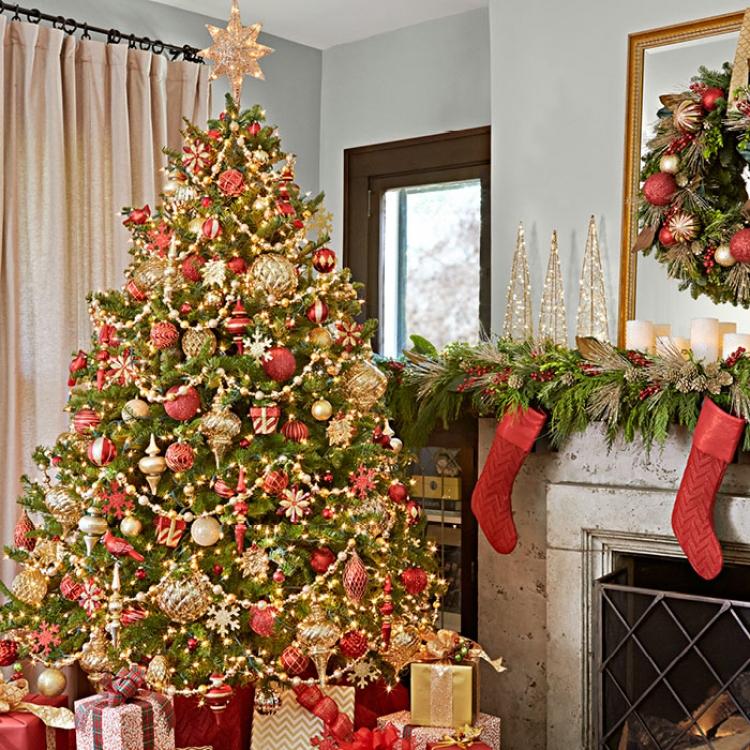сми новогодние елки фото для дома каждый вас будет