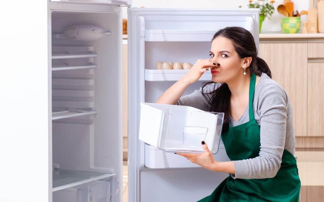 Чем мыть холодильник от запаха: только свежесть на вашей кухне